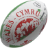 RDAD15BallHomeNations Welsh Flag (1)